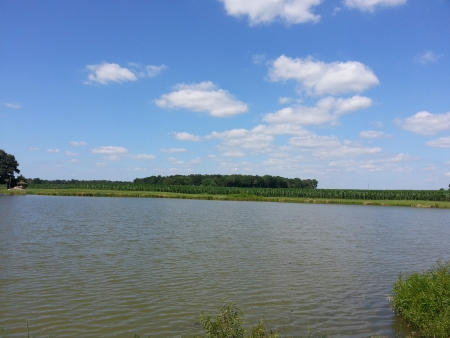 midwest: Beautiful Blue Sky over Large Pond Midwest Summer Day