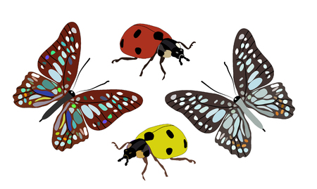 macro nature: Two butterflies and ladybugs isolated on white background Illustration
