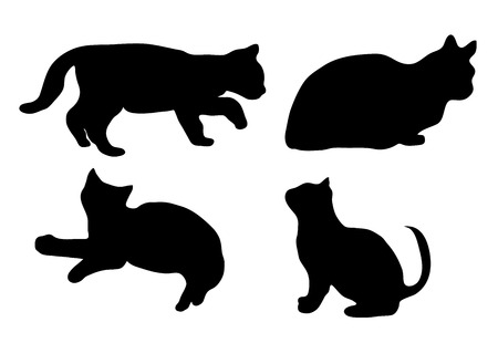 Nero sagoma di un gatto che si distingue, si siede, si trova e se ne va