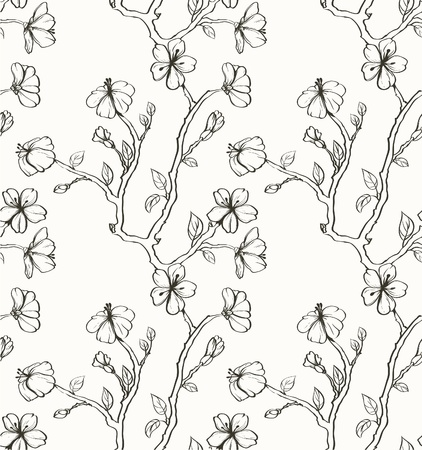 cherry pattern: Sakura on the white background