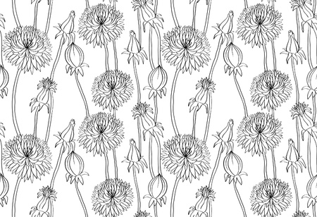 repetition: Black hand drawn dandelions on white background. Seamless wallpaper. Vector