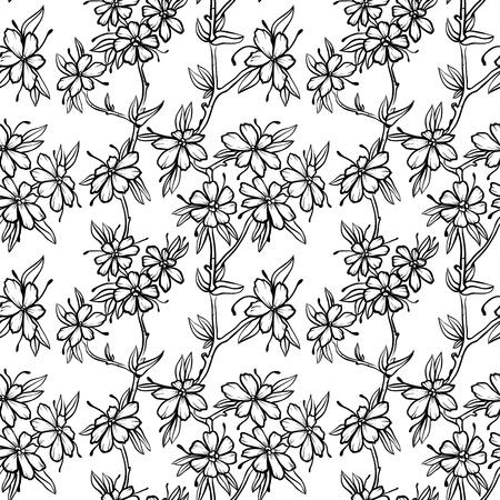 Floral seamless pattern avec des fleurs dessinées à la main Banque d'images - 11964904