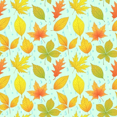Autumn seamless pattern with colorful leaves Vector