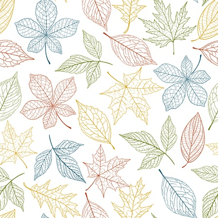 Seamless pattern with defferent colorful leaves Vector
