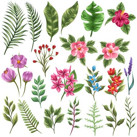 florales: Conjunto de flores y de hojas tradicionales y tropicales