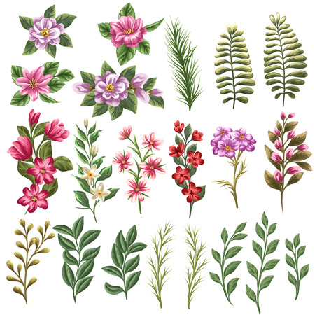 Collection of flowers and leaves in watercolor style