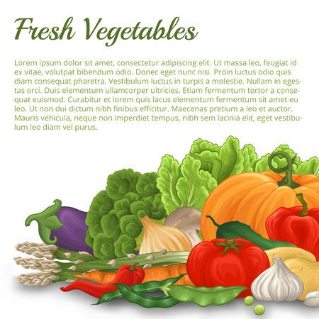 흰색 배경에 그림자와 다른 야채의 많은 수채화처럼 양식에 일치시키는