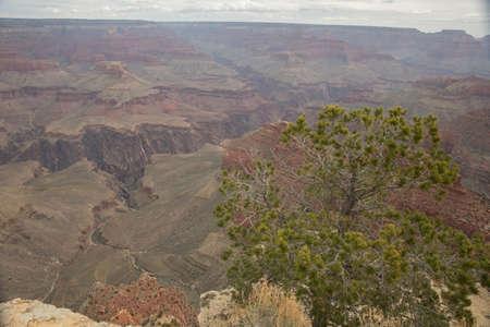 Grand Canyon Arizona Фото со стока