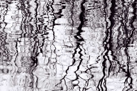with reflection: Black and white reflections of bare trees in a pool of rippling water form an abstract image of lines, shapes, and tones.