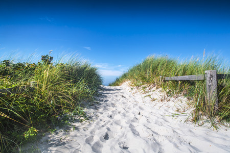 Clean white sand leading to a North sea beach between coastal grasses and dunes on a sunny blue sky day conceptual of travel and a summer vacation