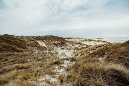 Sand dunes on the island of Amrum in spring on a cloudy, atmospheric day at low tide. Idyllic picturesque landscape with dry grass. Stock Photo