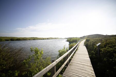 Sunny view of tourist sightseeing path along lakeshore. Rest place on wooden walkway in national reserve. Picturesque view of preserved landscape