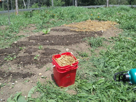 way out: Simple way to keep weeds out the garden Stock Photo