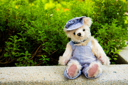 Teddy bear sitting in the park. family Concept.