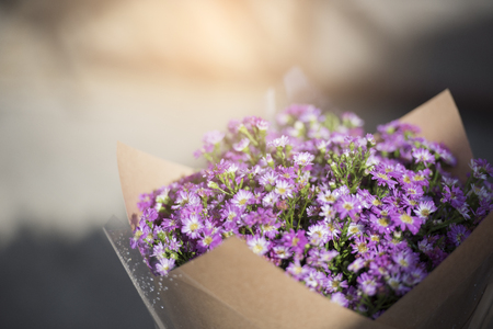 Violet flower bouquet with sunlight.