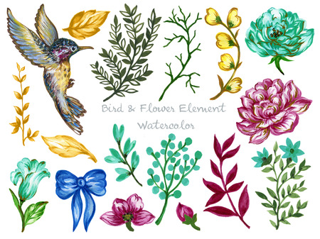 Watercolor illustration Hummingbird Birdcage Botanical leaves collection Set of gold color wild and Blossom garden and abstract foliage elements hand painted