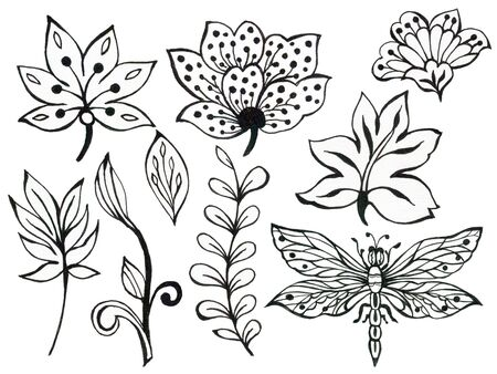 Abstract hand draw flower leaves butterfly insect and wave, doodle bouquet paisley oriental or arabic, russia art element on white background Zdjęcie Seryjne