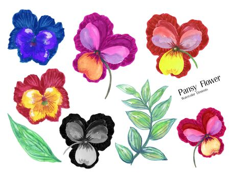 Watercolor gouache illustration of pansy colorful flowers and leaf  for greeting card, invitation card for wedding, birthday and other holiday and summer background hand paint