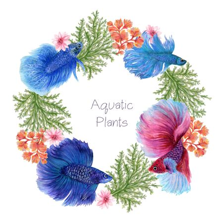 The beautiful of flower betta fish asian animal art chinese and siamese elements wreath bouquet watercolor Gouache Hand Painted