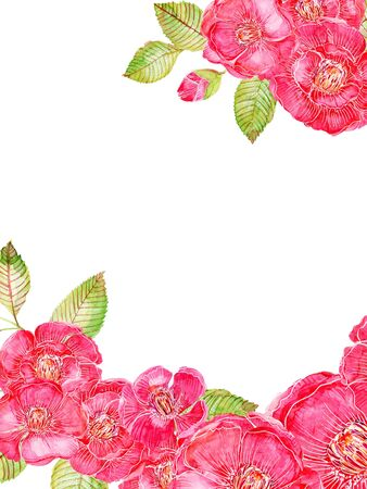 Watercolor illustration Pink and red color traditional asian  Little flower Set of wild and garden and abstract card frame border arrangements hand painted on white background 写真素材