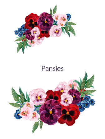 Watercolor set of marsala red pink blue pansy flowers, botanical illustration, leaves and buds for border, frame, invitation card by hand paint Stockfoto