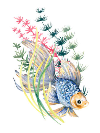Watercolor spring and summer goldfish and aquatic plants asian element arrangement isolated on white for poster travel wallpaper invtation card party by hand