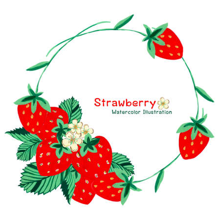 watercolor strawberries, whole berries and cut and little flower wreath bouquet on white background by hand drawing 版權商用圖片 - 165186938