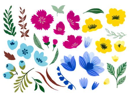 Watercolor illustration Botanical leaves collection foliage abstract gebera Starburst cosmos flower leaves elements hand painted 版權商用圖片 - 166285751