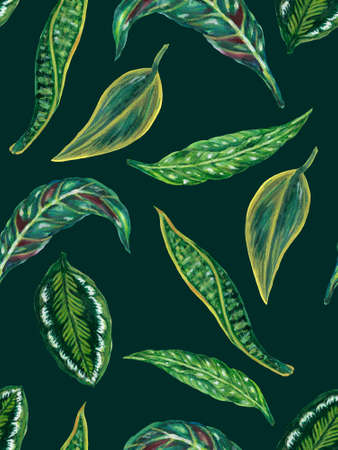 Watercolor gouache illustration Botanical leaves collection Tropical leaves houseplant hand painted seamless pattern texture textiles 版權商用圖片 - 167435989