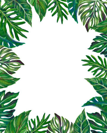 Watercolor illustration Botanical tropical monstera fern palm houseplants frame invitation label greetings hand painted