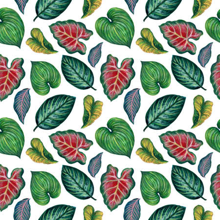 Anthurium, Caladium, Tropical  leaves, branches foliage seamless pattern illustration watercolor hand paint For design textiles, paper, wallpaper, backdrop
