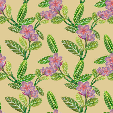 Watercolor illustration Botanical collection Plumeria and Frangipani foliage leaves bouquet Set of wild and garden and abstract seamless pattern hand drawing 版權商用圖片