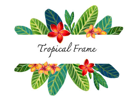 Hand painting watercolor illustrationinspired by Plumeria Frangipaniplants leaf greeting template frame banner layout on white