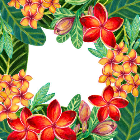 Hand painting watercolor illustrationinspired by Plumeria Frangipaniplants leaf greeting template frame on white