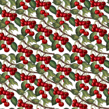 Cherry fruit sweet and sour cherry ripe Cherries with foliage leaves digital hand painting seamless pattern background 版權商用圖片