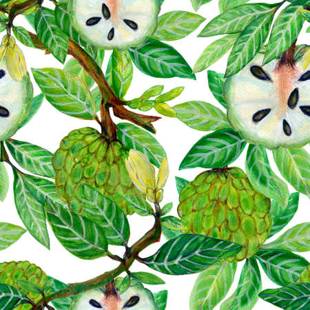 Hand painting seamless repeat pattern background icustard apple fruit  plants flower blooming forest watercolor illustration