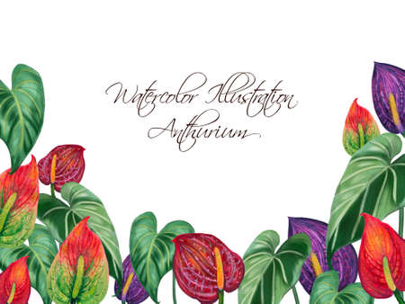 Hand painting watercolor illustrationinspired by anthurium and caladium and peace lily plants greeting template layout frame card