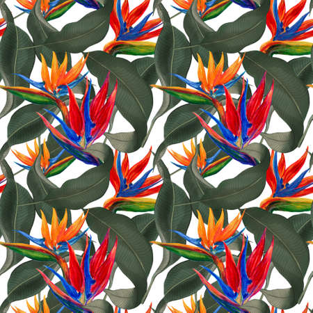 Watercolor gouache Rainforest bird of paradise plants branches with leaves and Hand drawn illustration Design for wedding invitations fabric pattern scrapbook greeting cards 版權商用圖片