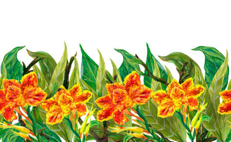Watercolor illustration Botanical collection canna floral foliage leaves Set of wild and garden and abstract seamless pattern hand drawing 版權商用圖片
