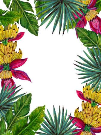 Tropical fruits plants  botanical leaves banana palm monstera rainforest houseplant template label frame on white background
