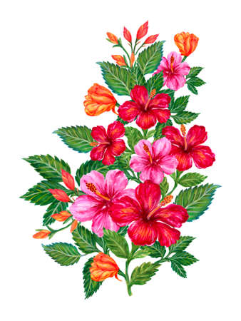 Watercolor Hand painted jungle exotic hibiscus flower and leaves foliage isolated wreath bouquet illustration on white Background for party , greeting card