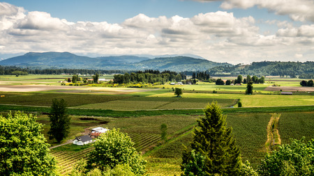 farming area: The fertile farming area of Glenn Valley in the Fraser Valley of British Columbia