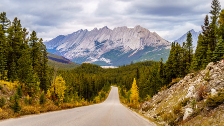rocky road: Colin Mountain Range seen from Maligne Lake Road in Jasper National Park in Canada