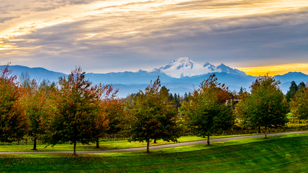 mount baker: Sunrise over Mount Baker and a tree lined lane in the Fraser Valley of British Columbia, Canada