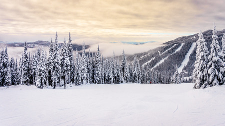 ski runs: Sunrise over the ski runs at the Sun Peaks ski resort in the Shuswap Highlands in central British Columbia, Canada