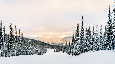 run down: Empty ski run down to the village of Sun Peaks in the Shuswap Highlands of central British Columbia, Canada Stock Photo