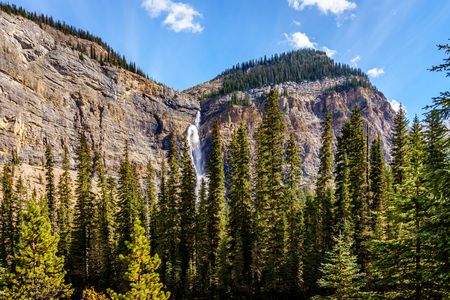 freefall: Takakkaw Falls in Yoho National Park in the Rocky Mountains in British Columbia, Canada. Plunging from above at a height of 380m 1246 ft  with a 254m  833 ft  free-fall is Canadas second highest waterfall
