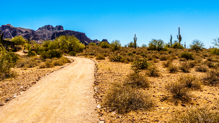 superstition: Desert Trail to Superstition Mountain in Tonto National Forest in Arizona, USA
