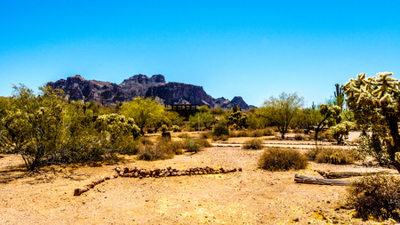 superstition: Lost Dutchman State Park with Superstition Mountain in the background in Tonto National Forest in Arizona, USA Stock Photo