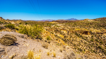 Desert Landscape of Tonto National Forest along the Apache Trail in Arizona, USA Stock Photo